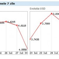 Evolutia EURO & USD