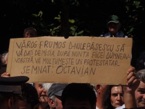 Proteste nunta Elena Basescu
