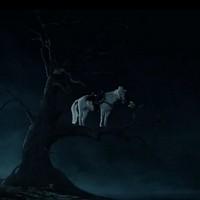 Trailer: The Lone Ranger (2013)