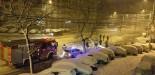 Cad copacii prin București după câteva ore de ninsori